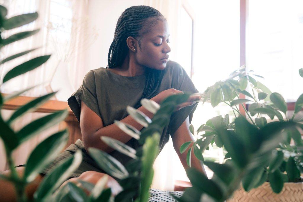 How Indoor Plants Make You Feel Better? (11 Healing Powers of Plants)